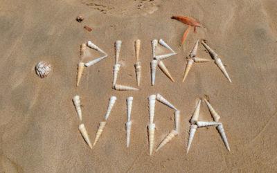 What Does Pura Vida Mean?