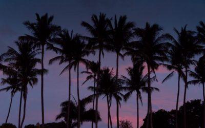 Tamarindo Costa Rica Sunsets – TGIF – August 19th