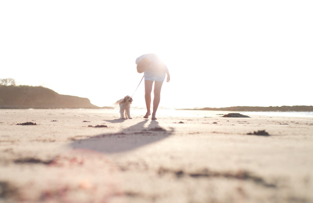 Lifestyle brand photography for Puppy Mama by Kristen M. Brown, Samba to the Sea.