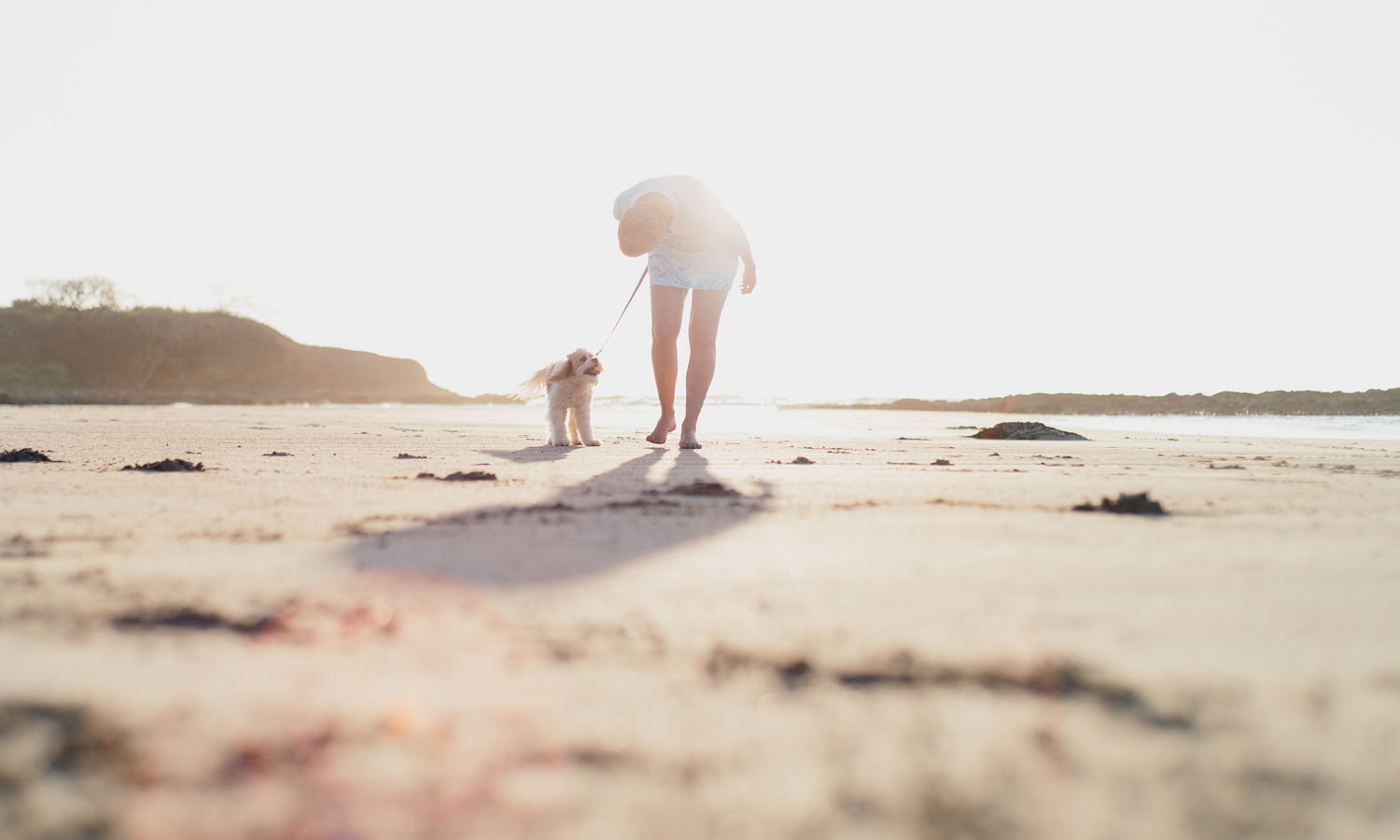 Woman walking with her Cavapoo dog on the beach in Tamarindo, Costa Rica. Photographed by brand photographer Kristen M. Brown, Samba to the Sea.
